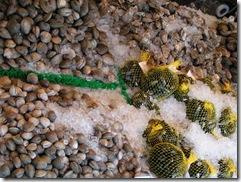 Fish Market8